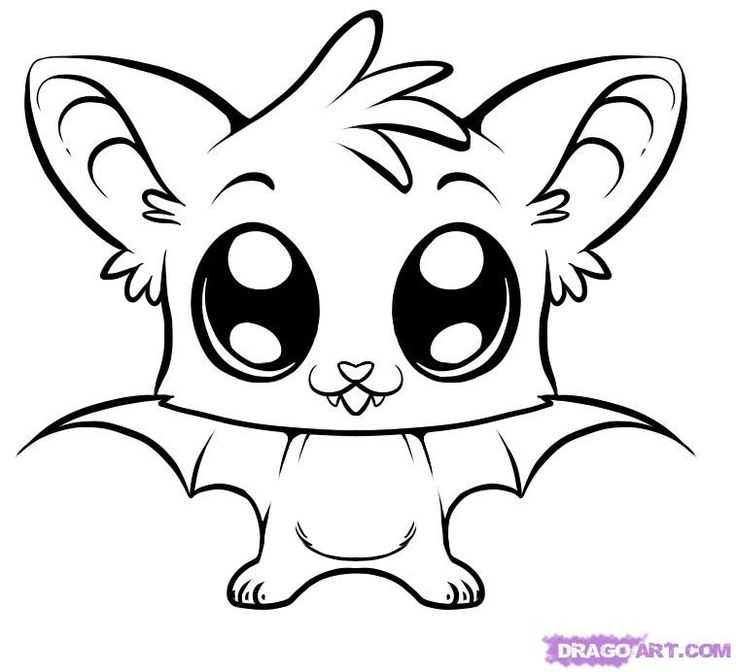 736x672 Cartoon Animal Drawings Group With Items - Animal Drawing Ideas