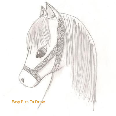 400x400 Easy Pics To Draw The Best Easy Animal Drawings Ideas - Animal Drawing Ideas