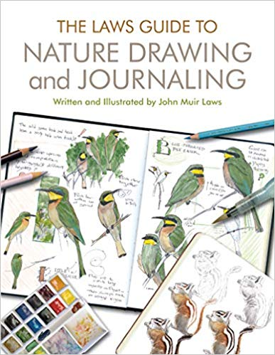 387x499 the laws guide to nature drawing and journaling - Nature Drawing Photos