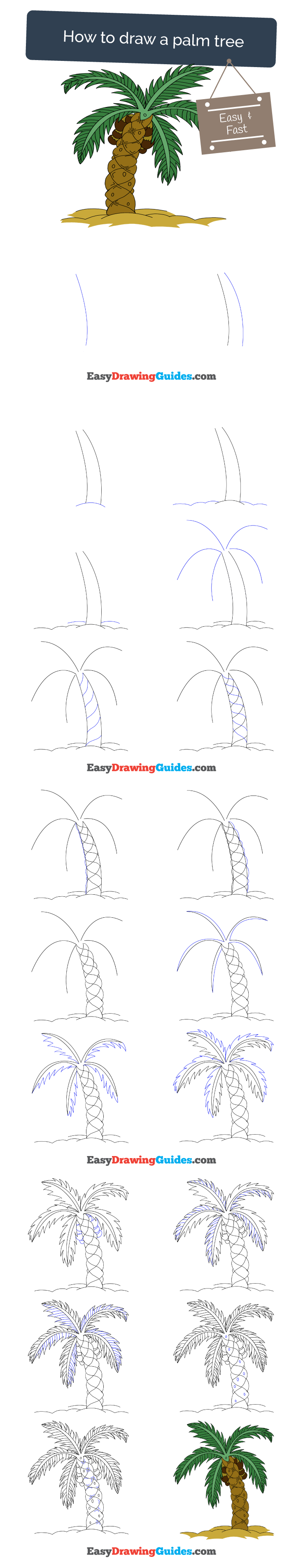 736x3810 how to draw a palm tree easy and simple guide palm, draw - Palm Tree Drawing Steps