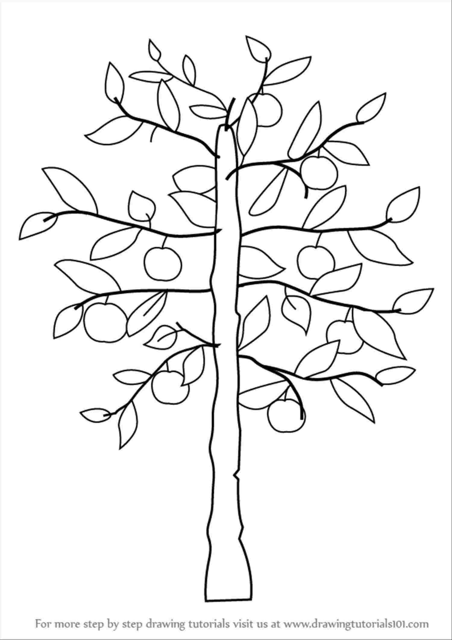 Tree Easy Drawing