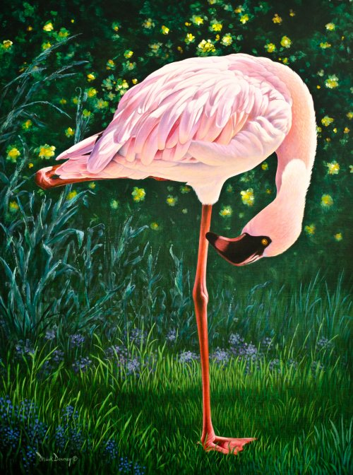 500x672 Birds Eye View Oil Painting Of A Pink Flamingo Mark Downey - Birds Eye View Painting