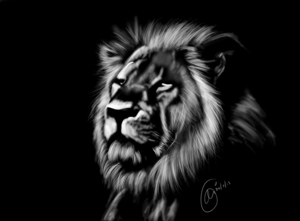 1041x768 rip cecil the lion by ginaza black and white lion painting
