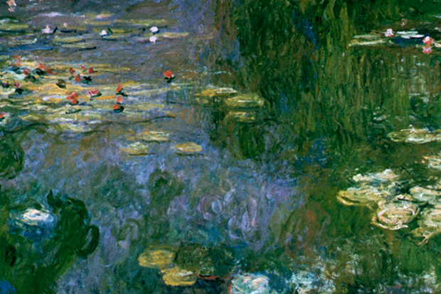 620x413 Monet's Water Lilies His Great War Gift To France The Spectator - Water Lilies Painting