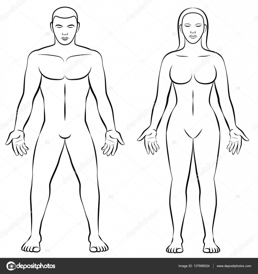 900x957 Download Female And Male Body Outline Clipart Shape