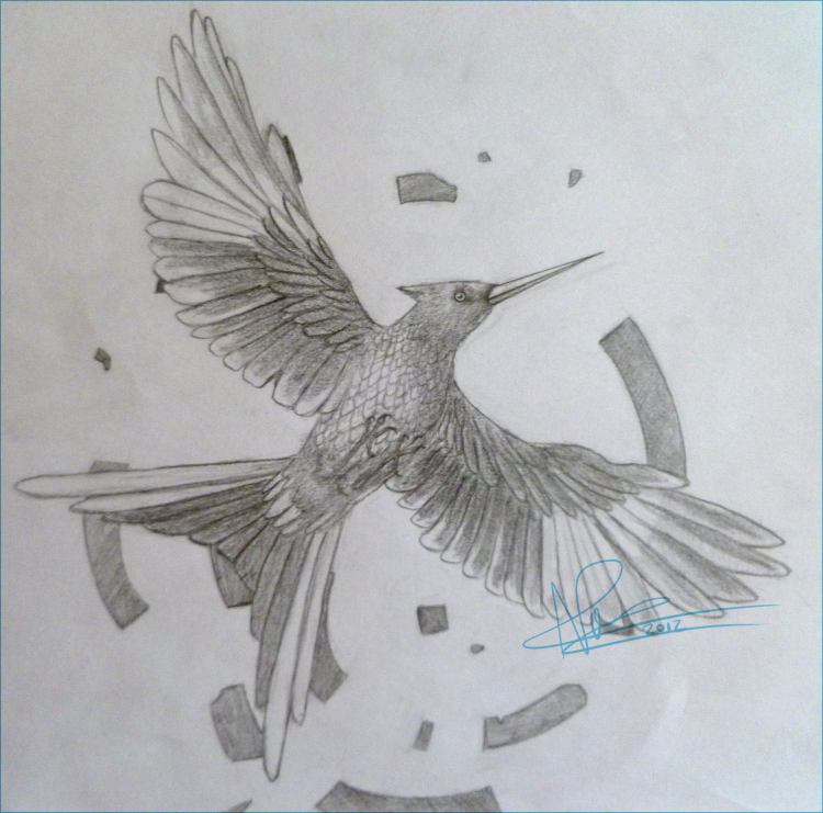 750x741 The Mockingjay Mockingjay By Ninitel - Mockingjay Sketch