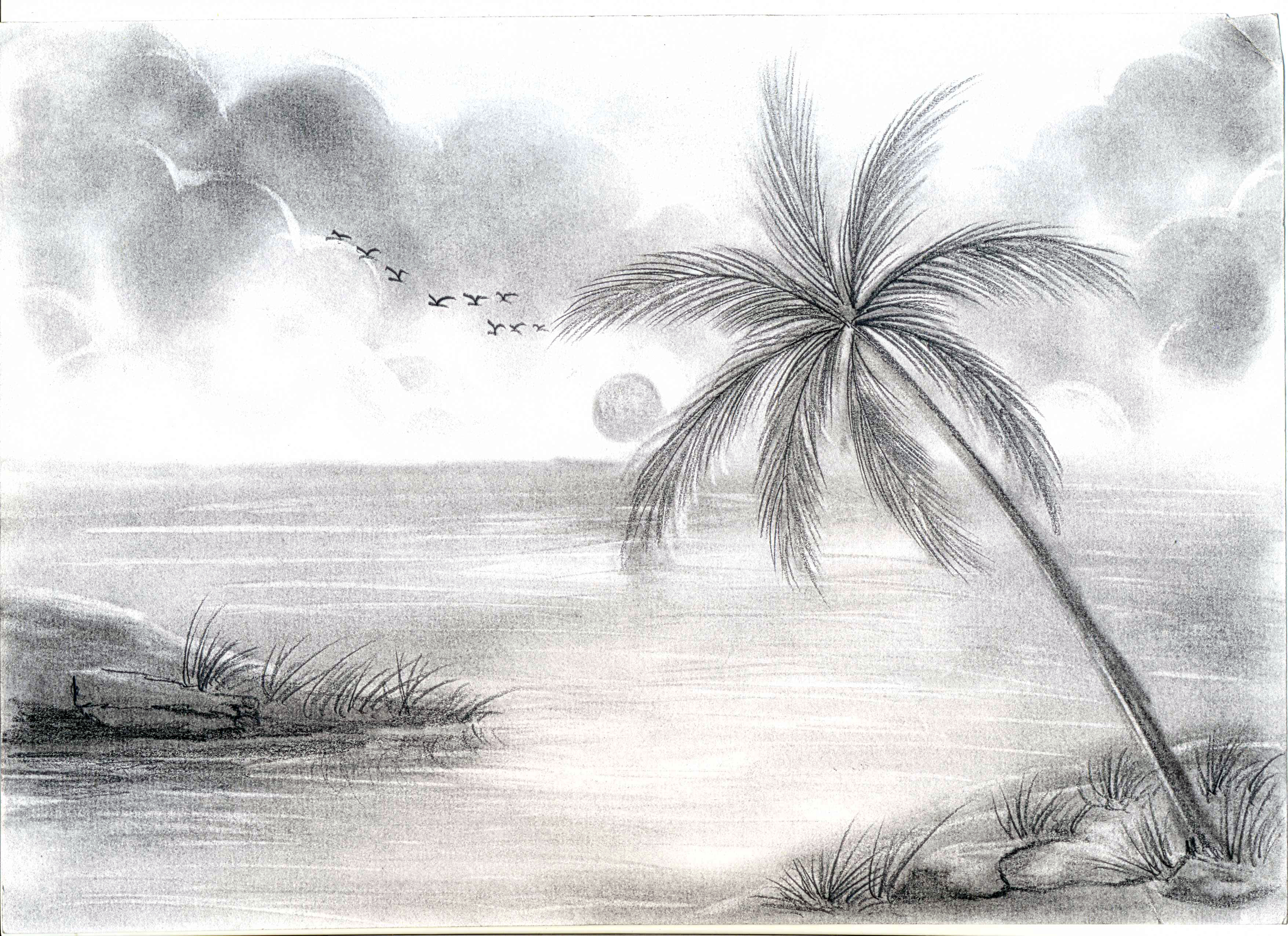 3510x2550 easy pencil sketch drawing nature easy shading drawing nature pencil sketches of nature