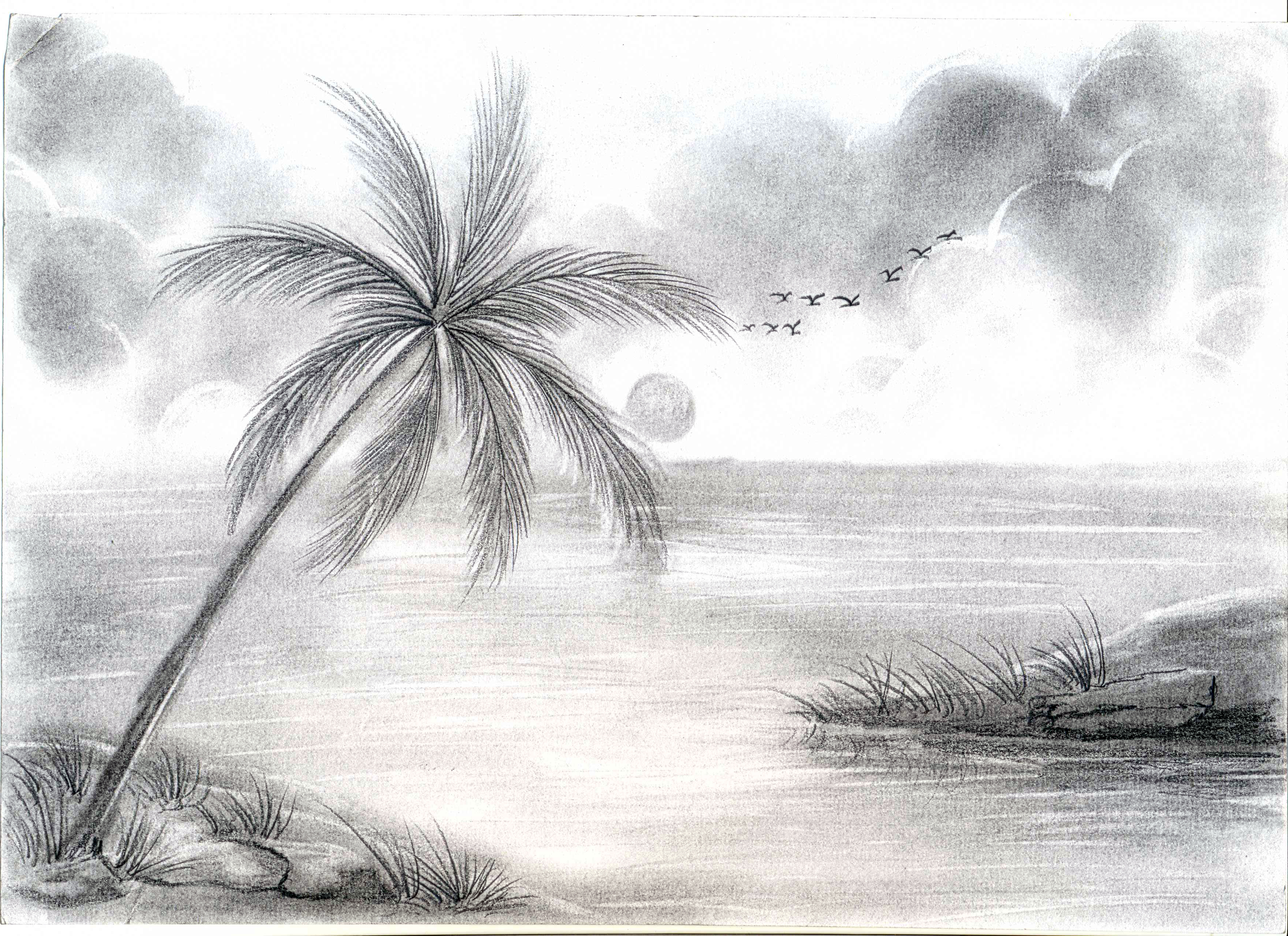 3510x2550 simple pencil sketching nature pencil drawing of nature scene pencil sketches of nature